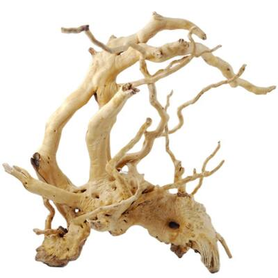 Finger wood fagyökér
